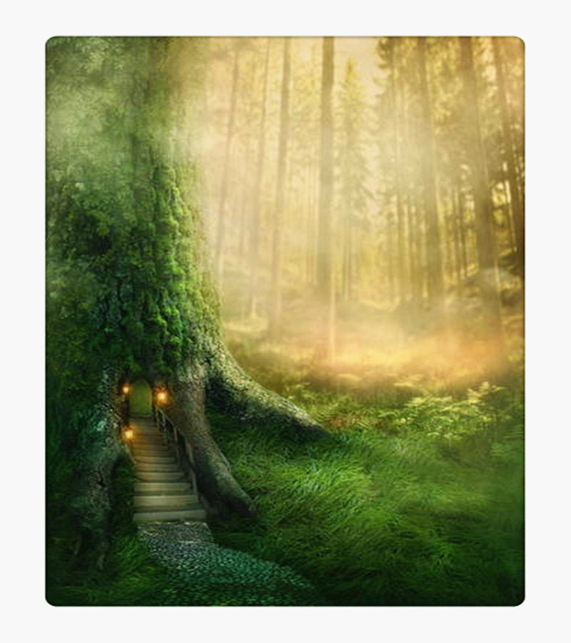 Green Forest In Fairy Tale Photography Background Dreaming