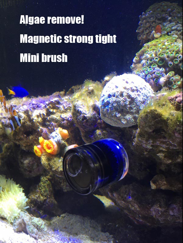 Algae remove cleaner brush magnetic strong tight mini nano for How to remove algae from fish tank glass