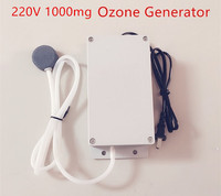 New Ozone Generator 220v 1000mg Food Water Air Sterilizer Generator Ozone Water Purifier Ozone Machine
