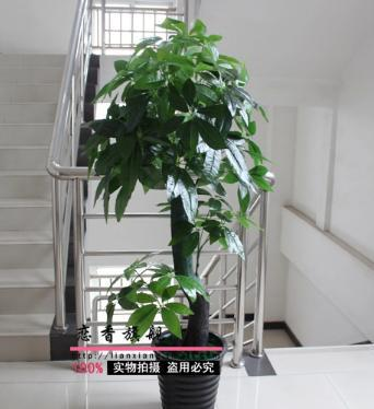Artificial Trees For Living Room Brown And Red Rugs Freeshipping With Pot Total 155cm Plants Bonsai Tree Decoration Hot Selling Pachira