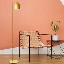 Creative Lovely Modern Macaroon Color Floor Lamp Romantic Kids Study Room floor lamp cute children bedroom light pink red