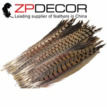 ZPDECOR 50pcs/lot 25-55cm(10-22inch) Beautiful TOP Quality Natural Ringneck Pheasant Tail Wholesale Feathers For Carnival Decor