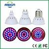 E27 GU10 MR16 Bulb Red + Blue Full Spectrum Led Grow Lamp For Flowering Plant and Hydroponics Lighting 36 48 72Leds Bulb Lamp