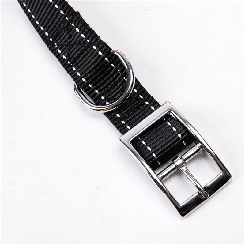 Dog Collar and Leash Set (1)