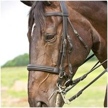 3 m caballo riendas negro elástico cuello Camilla caballo la brida Correa cuerda resistente al desgaste ecuestre suministros