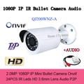 Onvif Mini Bullet IP Camera 2mp Security HD 1080p P2P Audio Infrared Megapixel IP Cam Gun Network CCTV Camara H.264 Email Alert