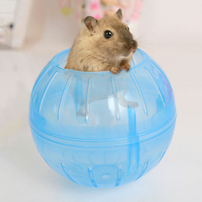 1 Pc Pet Toys For Small Animals 10cm/3.93