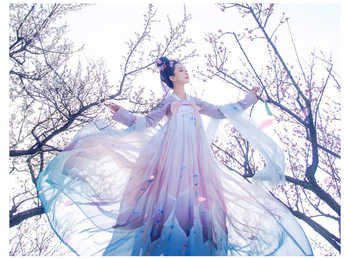 Freeship Chinese traditional clothing gown set Han fu dress - DISCOUNT ITEM  0% OFF All Category