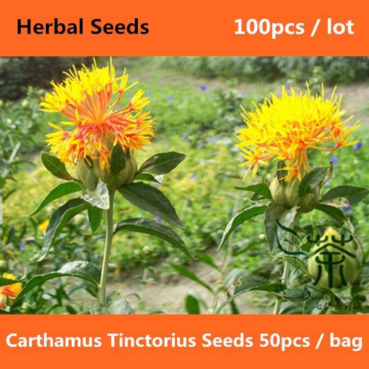 Image result for Hong-Hwa ( Carthamus tinctorius)