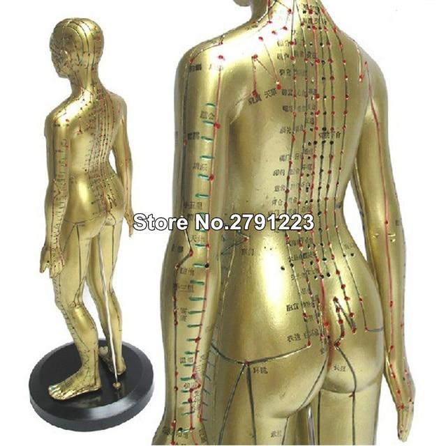 Modèle Meridian modèle dacupuncture humaine pour femme 48cm, 1 pièce