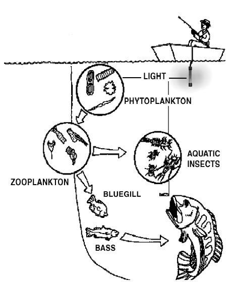 12v Solar Fishing Light Deep Sea Underwater Led Squid Fishing Lure