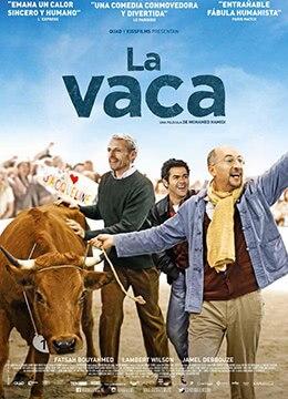 《母牛》2016年法国剧情,喜剧,冒险电影在线观看