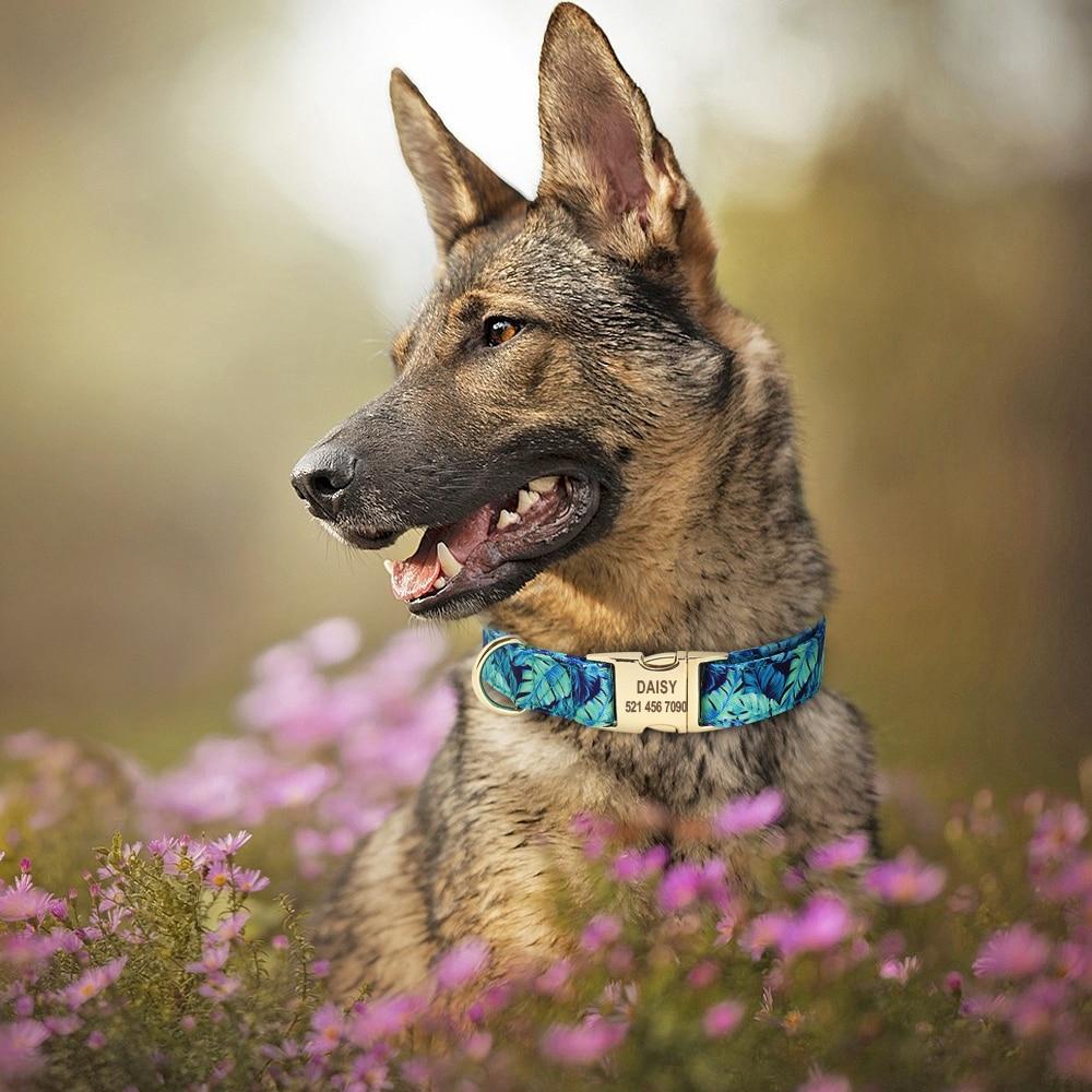 collier-chien-personnalisé-fleur1