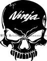 Free shipping Motorcycle tank Skull Decal Sticker NINJA LOGO For NINJA250R 500 1000 ZX6R 7R 9R 10R 12R 14R Shell Decals