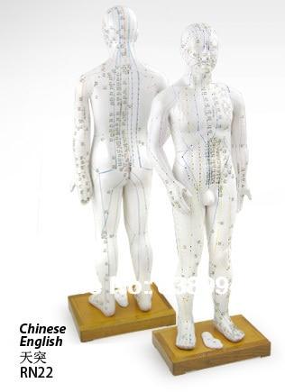 The human body instruction manual hbn show.