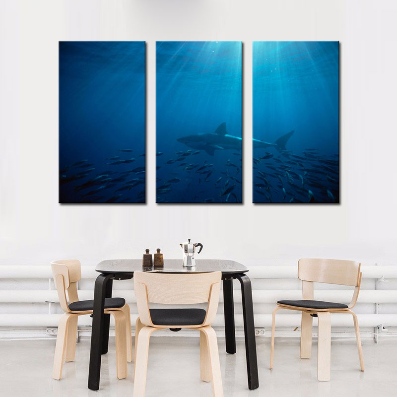 Aliexpress Buy 3 Picture Combination Wall Art Painting Great White Shark In Australia Blue Sea Prints On Canvas Animal For Home Decor From