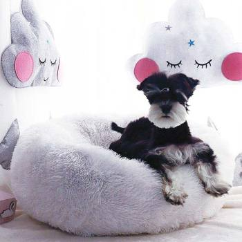 Pet's Round Shaped Fluffy Bed Beds & Sofas