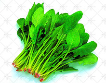 50 Organic Spinach Seeds Salad Leaves Good Taste Rich Nutrition Non-GMO DIY Home Garden Plant Vegetables Seeds