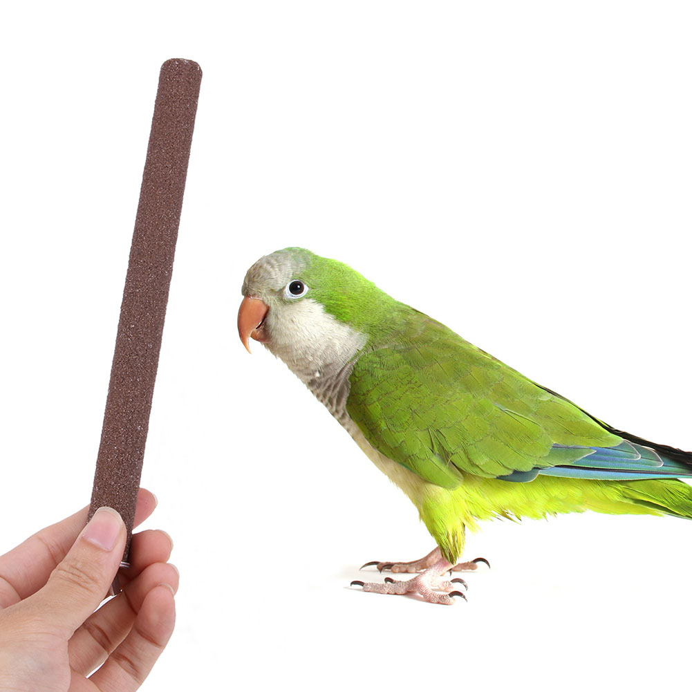 Wood Bird Perch Stand Platform Toy Paw Grinding Clean Pet Colorful Ladder Toys