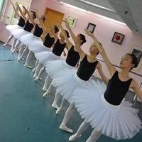 Professional Adult Ballet Dance Skirt 2 Color Choice 5 Layers Hard Organdy Platter Half TUTU Performance