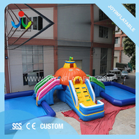 Giant Inflatable Water Park With Swimming Pool For Sale