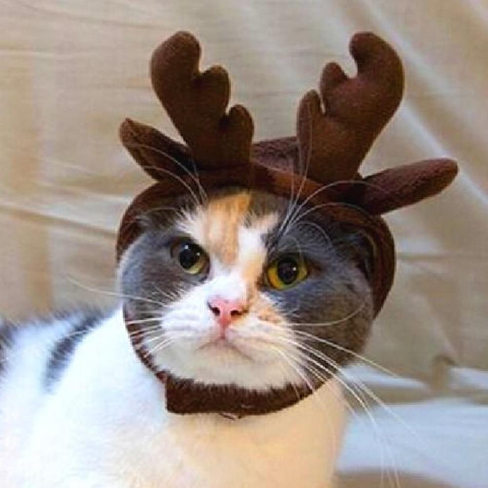 1Pcs Headbands Dog Antlers Cap Pet Supplies Dog Cat Hat ...