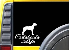 Car Styling for Catahoula Life K442 6 inch Sticker Louisiana Catahoula dog decal Car Sticker(China)