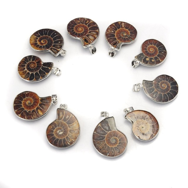 10Pcs Natural Stone Ammonite Fossils Seashell Snail Pendants Ocean Reliquiae Conch Animal Necklaces Statement Men Jewellery