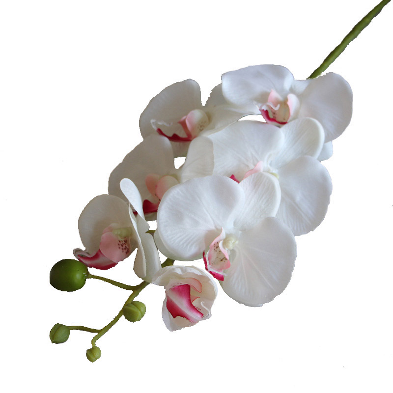 Image 5 - 7 Heads Phalaenopsis Orchid Flower Artificial Flower Wedding Decoration Floral Christmas Party Home Decor-in Artificial & Dried Flowers from Home & Garden
