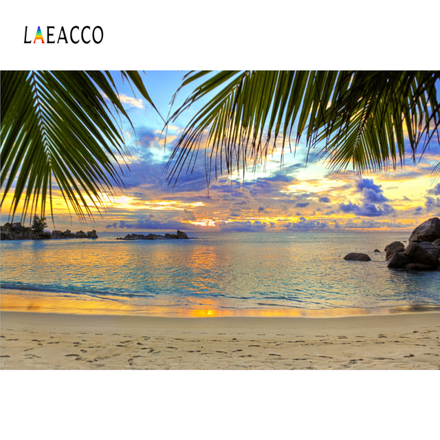 Summer Tropical Sea Beach Palm Tree Aurora Summer Holiday Natural Scenic Photo Background Photo Backdrop Photocall Photo Studio