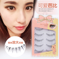 Top quality long winged false eyelash 2 set/lot(10 pairs) fashion big eyes transparent plastic terrier brand eyelash extension