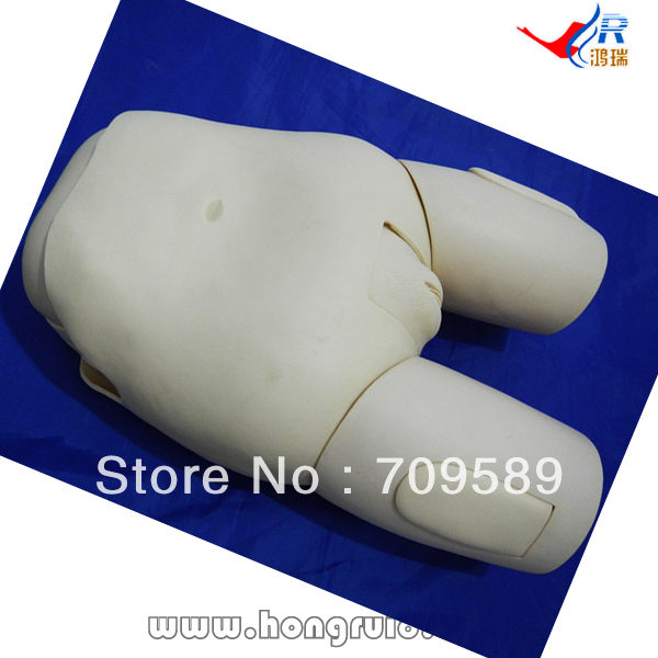 ISO Advanced Female Catheterization Model, Catheterization trainer, Urethral Catheterization Simulator transparent female catheterization simulator urinary catheterization model