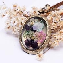 Sedmart настоящие сушеные анютины глазки медальон с цветком