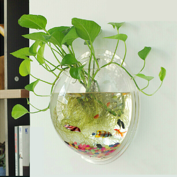 Online buy wholesale wall aquariums from china wall for Vase aquarium rond
