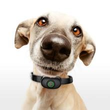 Репелленты для домашних собак, научная тренировочная ошейник для похожих маленьких средних и больших собак, USB, автоматический тренировочный ошейник для щенка