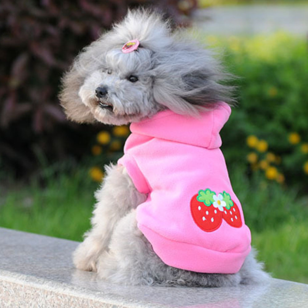 ₩2017 Nueva Otoño Invierno Productos Para Mascotas Ropa Para Perros ...
