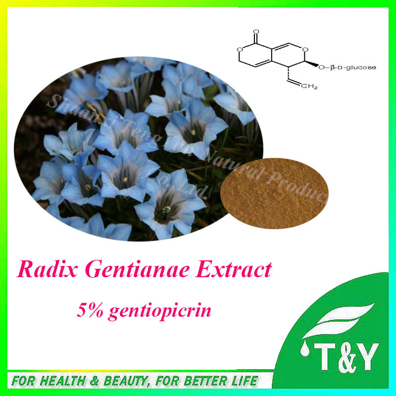 hot sale& factory price radix gentianae Extract. with free shipping, 5% gentiopicrin pure natural radix sophorae flavescentis extarct kuh seng extract 100g lot