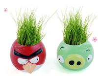 Beautifying Office Bonsai Grass Pots Planters Mini Desktop Plants Potted Seeds Bonsai Work Desk DIY Indoor Plants