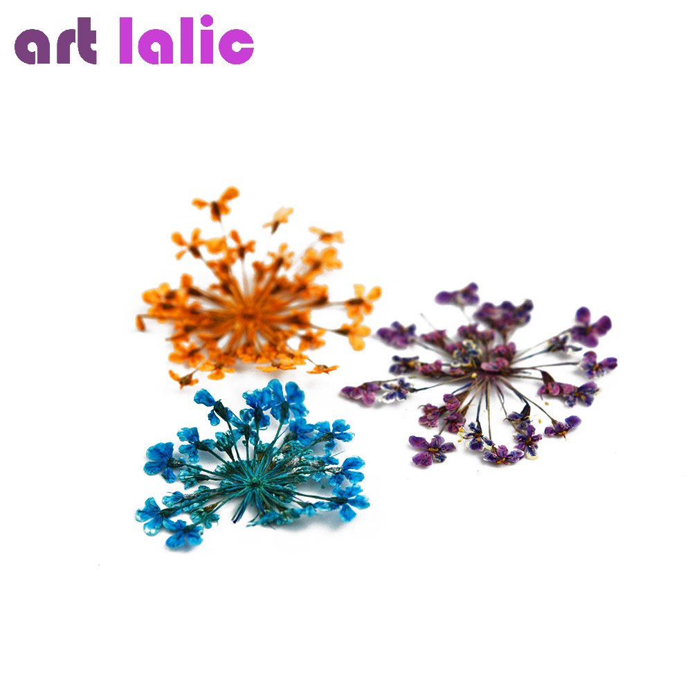 Kunst lalic 1 Box Mixed Getrocknete Blumen 3D Nagel Dekoration Rad ...