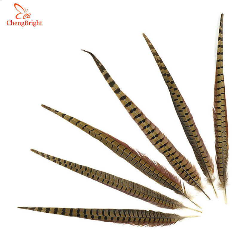 CHENGBRIGHT 12 14 Inch (30 35CM) Natural Pheasant Tail