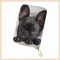 THIKIN-Women-Card-Holders-for-Credit-Card-Ladies-Portable-Card-Wallets-French-Bulldog-3D-Printing-Money.jpg_640x640