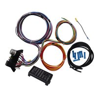 12 Circuit Universal Wiring Harness For Muscle Car Hot Rod Street Rod XL Wires For SI-AT52001 Durable Wires