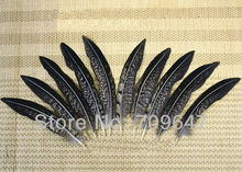 50Pcs/Lot 4-6 10-15cm Nature LADY AMHERST PHEASANT Body Plumage Feathers FREESHIPPING