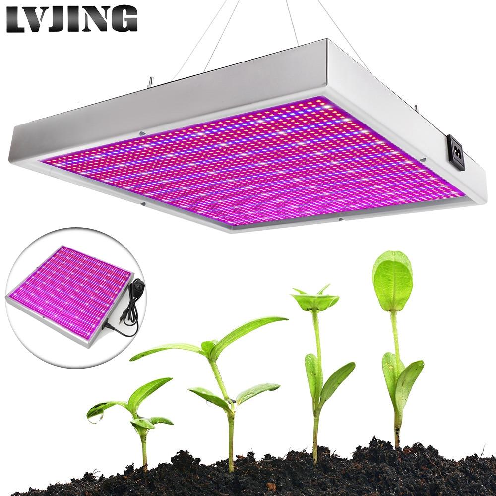 Lamp, Grow, Hydroponics, Cultivation, Plants, Indoor