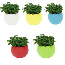 NEW Mini Colorful Round Plastic Plant Flower Pot Garden Home Office Decor Planter Desktop Pots