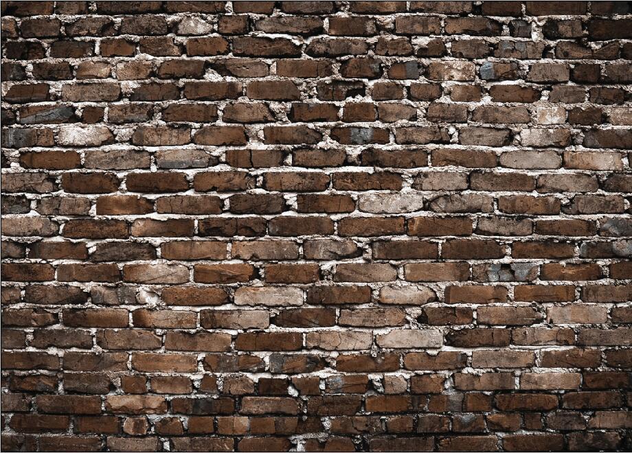 SHENGYONGBAO Vinyl Custom Photography Backdrops Prop Brick Wall Cartoon Scenery Theme Digital Photo Studio Background SE19301 09 in Background from Consumer Electronics