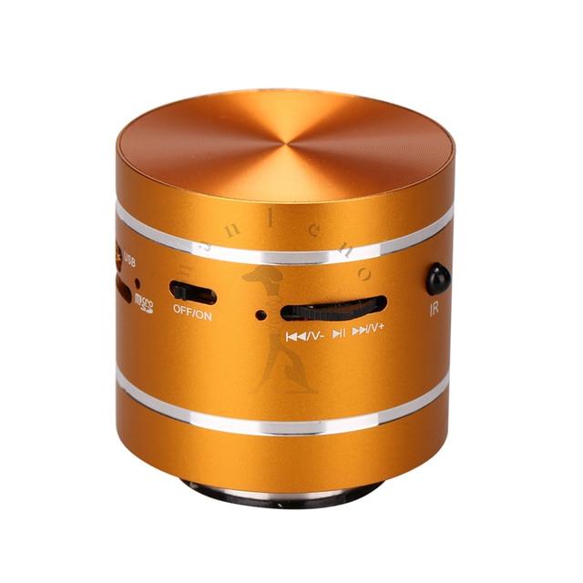 5W Vibration speaker Portable Mini Resonance Speaker with SD reader FM Radio Remote Control 360 degree Ominidirectional sound