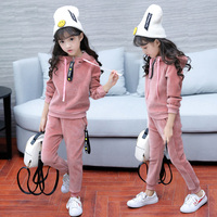 New Arrival Girls Sport Suits Casual Children's Tracksuit Spring Autumn 2018 Kids Girl Clothes Set 2Pcs Hooded Jacket+Pants F468