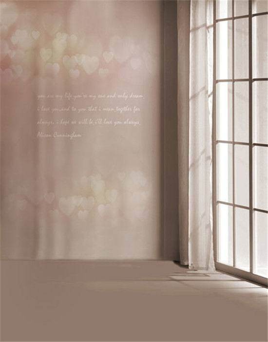 Online get cheap vinyl window curtains Custom vinyl windows online