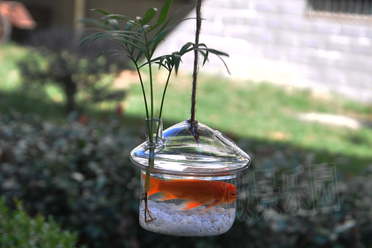 Oselif Hang Fish Tank Shop Decoraiton Mushroom Vase 100